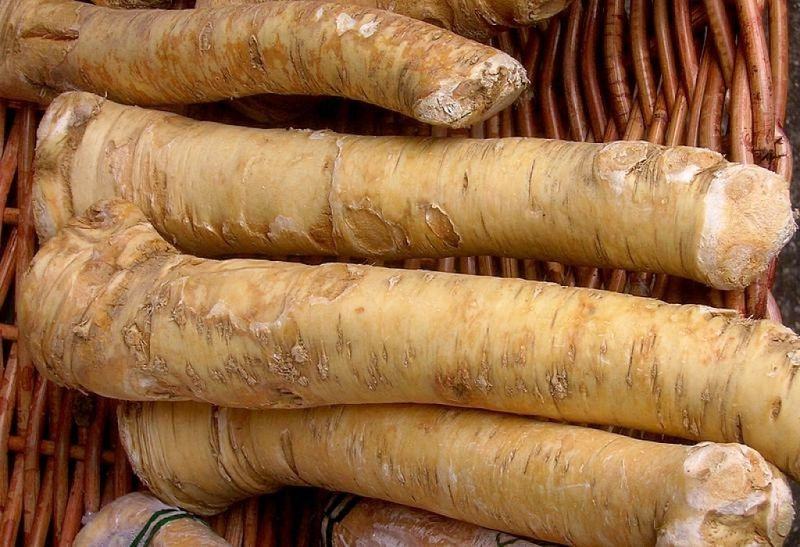 Horseradish can be used to make many delightful sauces and dressings. See the recipes provided in this article