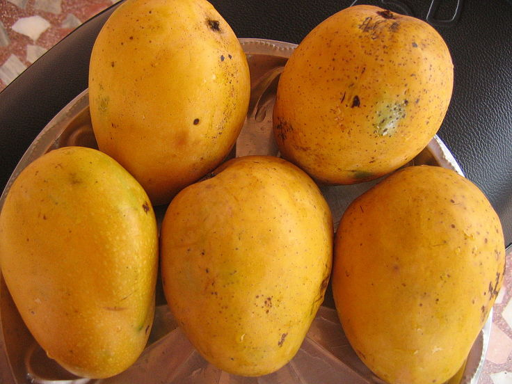 Save some of those fresh mangoes in season for cooking delightful dishes that showcase the taste, texture and color of mangoes