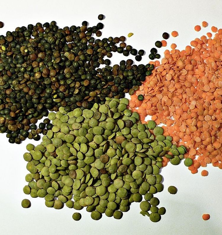 Lentils come in a variety of colors which can add interest to your homemade Mujadara dish