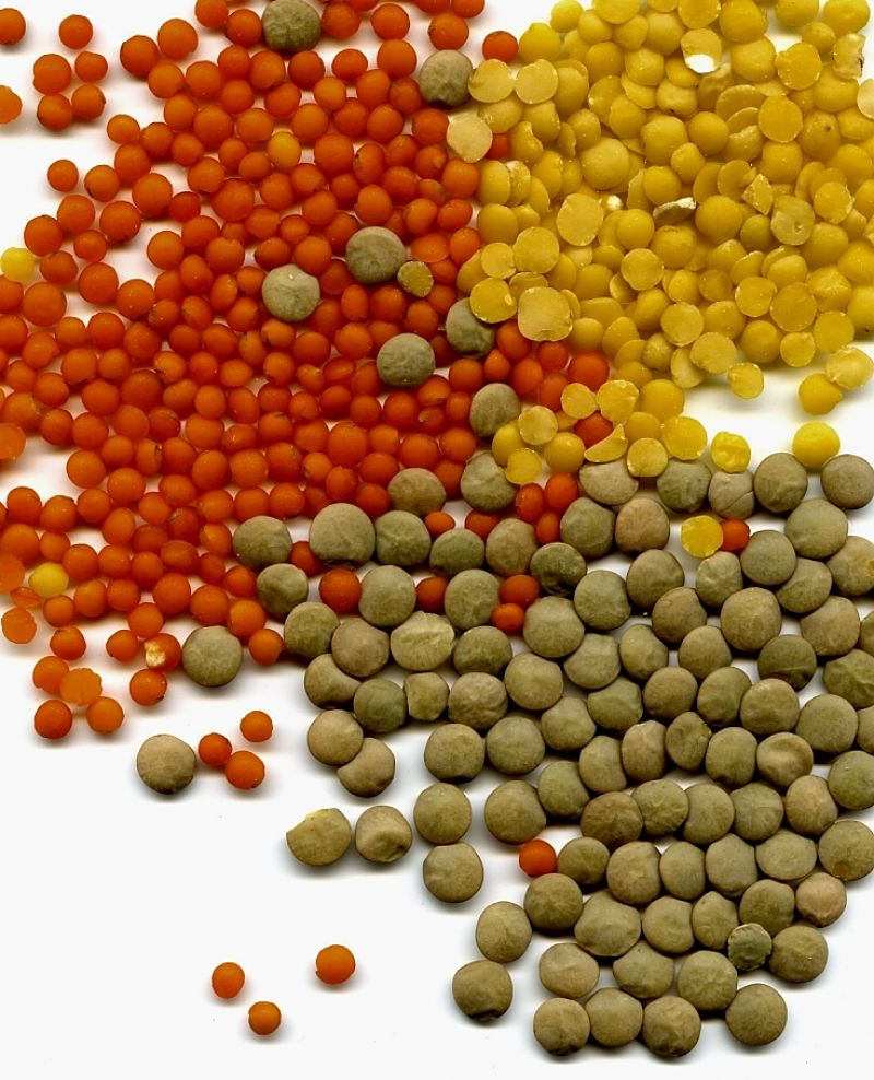 Lentils come in many varieties. Choose the type that best suits the dish you want to prepare. Various types have different properties when cooked