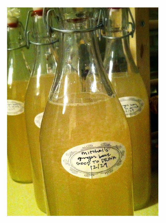 The bottled ginger beer is sealed and set aside to ferment in the bottle to create the 'fizz'
