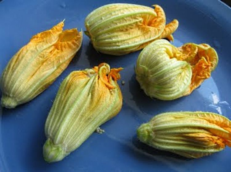The zucchini flowers are easy to stuff, but it takes care and a gentle touch